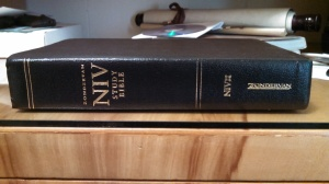 NIV Study Bible 01 - Spine